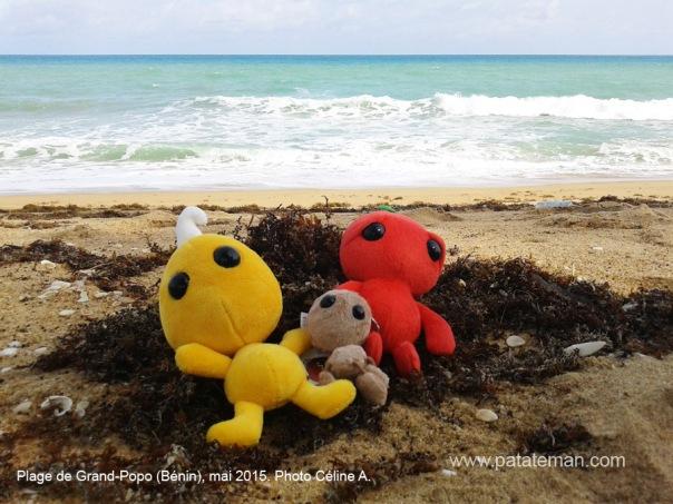 Mai 2015, plage de Grand-Popo
